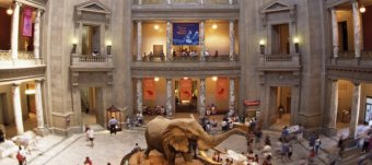 American Museum of Natural History Washington DC