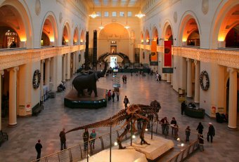 American Museum of Natural History Discounts tickets